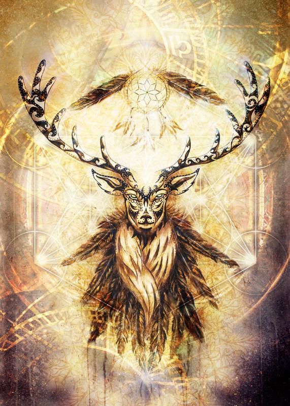 Healing, shamanska energiarbeten, Akasha/tidigare liv